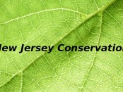 New Jersey Conservation
