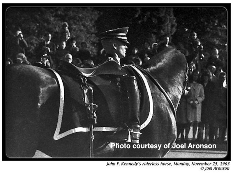 The Riderless Horse at JFK's funeral. Photo courtesy of Joel B. Aronson.