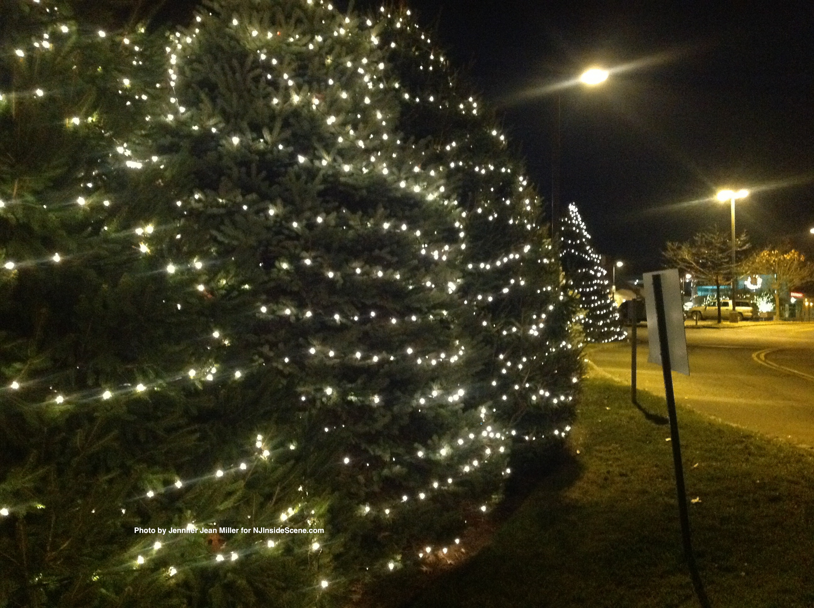 Trees aglow through the holidays at the Newton Medical Center.