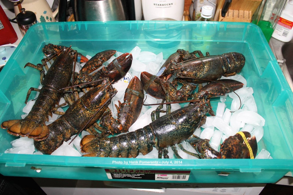 These lobsters on ice were part of Hank Pomerantz's July 4th celebration. Photo courtesy of Hank Pomerantz.