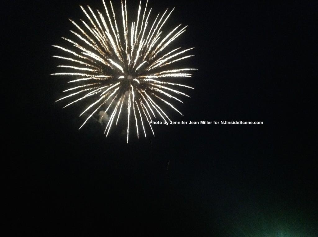 A floral fireworks' display by Jennifer Jean Miller.