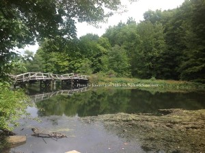 The Mule Bridge, in need of repair. Photo by Jennifer Jean Miller.