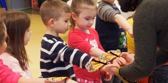 Preschool classmates at the Little Sprouts Early Learning Center learn all about butterflies from the Sussex County Master Gardeners at a recent presentation. Photo courtesy of Project Self-Sufficiency.