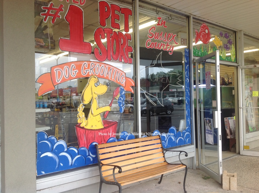 The front window of Nature's Cove, which boasts of its place as the number one rated pet store in Sussex County. Photo by Jennifer Jean Miller.