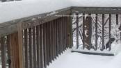A snowy scene in Sussex County. Photo by Jennifer Jean Miller.