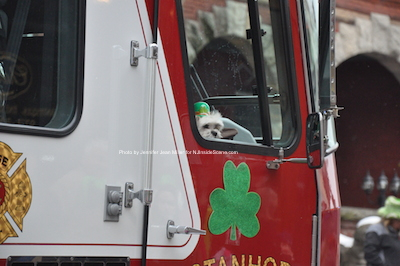 A canine member of the Stanhope Fire Department peeks his head from the truck. Photo by Jennifer Jean Miller.