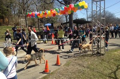 Runners and walkers participate in the Debbie Ann 5K. Photo by Jennifer Jean Miller.