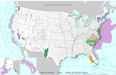 Image courtesy of the National Weather Service. The area adjacent to the Eastern Seaboard denotes a gale warning, though the storm is anticipated to stay out at sea.