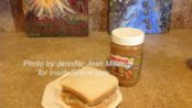 WOWBUTTER and banana sandwich, photo by Jennifer Jean Miller.